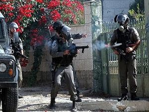 Batı Şeria'daki Gösteriler