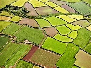 Miraslı tarım arazilerinde süre doluyor