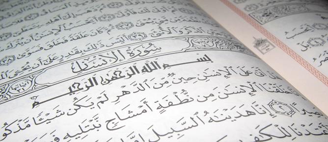 Allah'ın nimetlerini size bol bol verdiğini görmediniz mi?