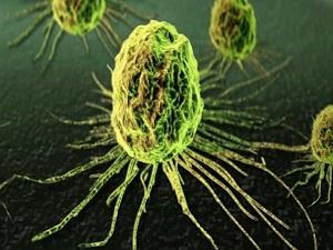 Kanser tedavisi öncesi kalp kontrolüne dikkat