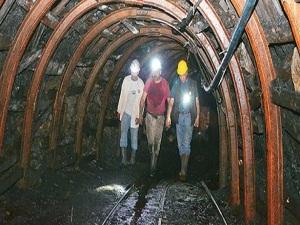 Özel işletmeler madende yetersiz