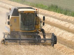 MO, buğdayın maliyetini düşünerek fiyat açıklamalı