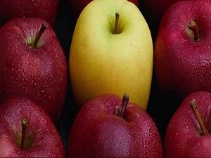 Elma üreticisinin umudu Rusya pazarı