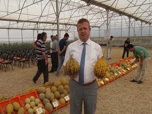 Kuraklığa dayanıklı domates ve kavun geliştirildi