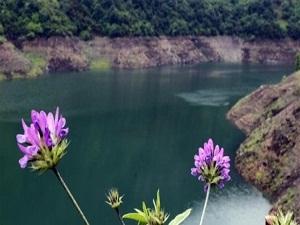 Yuvacık Barajı'nda su seviyesi yükseliyor