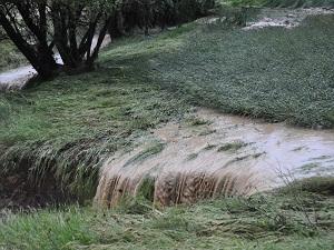 Yozgat'ta dolu yağışı 80 bin dekar tarım alanına zarar verdi