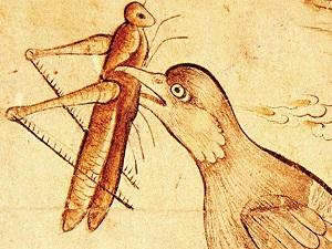 Osmanlı, çekirge istilasına karşı sığırcık kuşlarını kullanmış