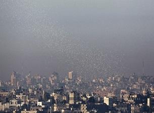 Gazze'de maaş protestosu