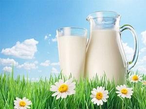 Süt üretimi arttı yumurta azaldı