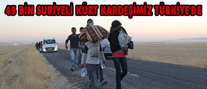 45 bin Suriyeli Kürt kardeşimiz Türkiyede
