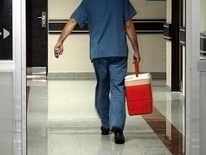 Beş yılda 30 bin kişiye organ nakli yapıldı