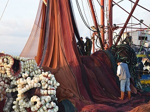 Balıkçılar, Vira Bismillah için gün sayıyor