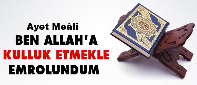 Ben Allah'a kulluk etmekle emrolundum