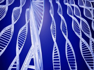 Prematüre bebeklere umut olacak gen