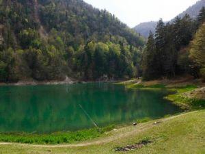 Sülüklü Göl'de 38 Endemik Bitki Bulundu