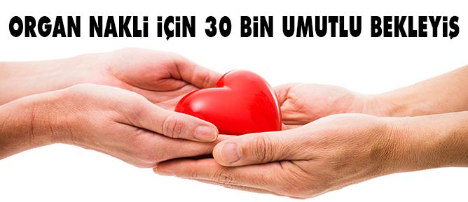Organ nakli için 30 bin umutlu bekleyiş