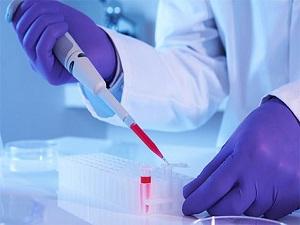 Kök hücre bağışında rekor