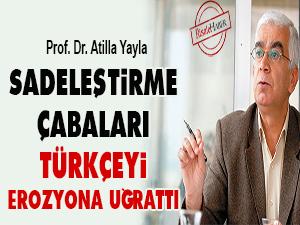 Sadeleştirme çabaları Türkçeyi erozyona uğrattı