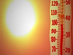 Erzurum, son 48 yılın en sıcak senesini yaşadı