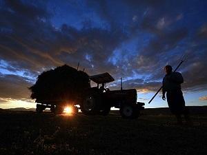 Çiftçiye 356 miyon liralık ödeme
