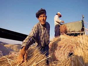 Tarım işsizliği tek haneli rakama çekti