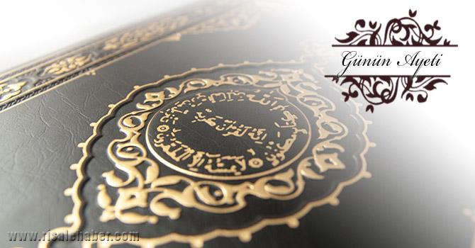 Allah, dâneleri ve çekirdekleri çatlatıp yarandır