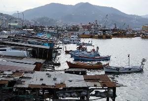 Karadenizli balıkçılar erken demir attı