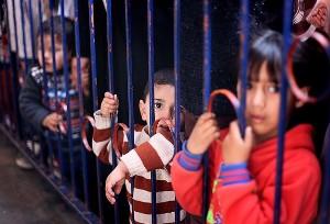 'İsrail Filistinli çocukları sömürüyor'