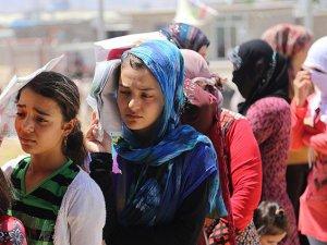 Irak'taki Suriyeli sığınmacılar evlerine dönmek istiyor