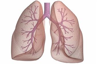 Yapay akciğer ile nefes almayı başardı
