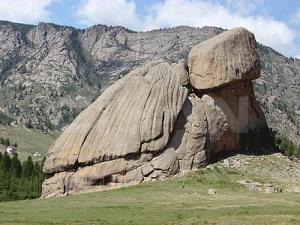 Kaplumbağa şeklindeki kaya hayrete düşürüyor