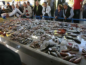 Türkiye'de balık azalıyor