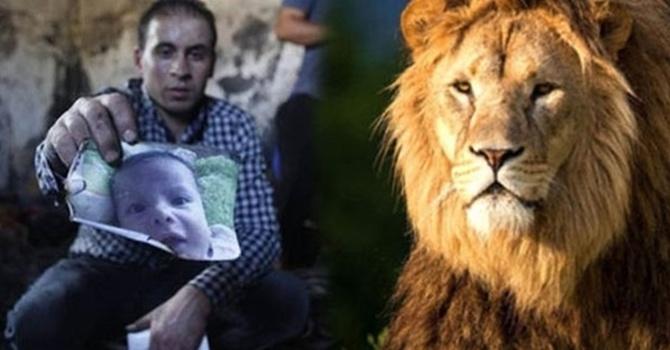 Dünya'nın ikiyüzlülüğü: Hayvana üzüldünüz bebeğe üzülmediniz!