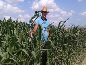 Çiftçinin aşırı sıcakta zorlu mesaisi