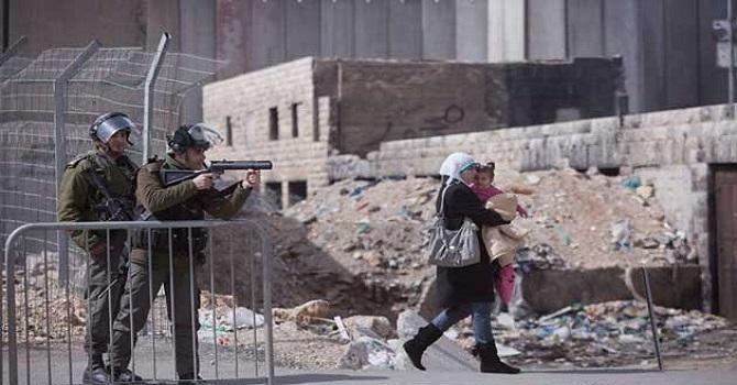 Filistin'deki Utanç Duvarı 100 bin insanı ayırdı