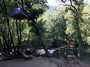 Karadenizli işletmeciden ağaçta kamp çadırı