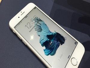 iPhone 6S mi, iPhone 6 mı?