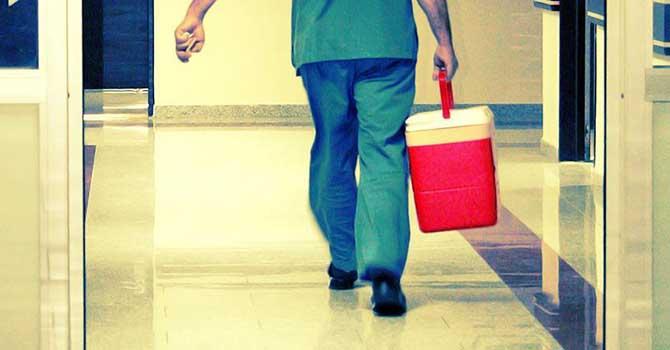 Eş zamanlı organ nakilleri 3 hastayı hayata bağladı
