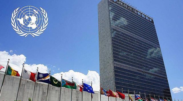 BM'de Türkiye için 'ırkçılıkla mücadele' oturumu