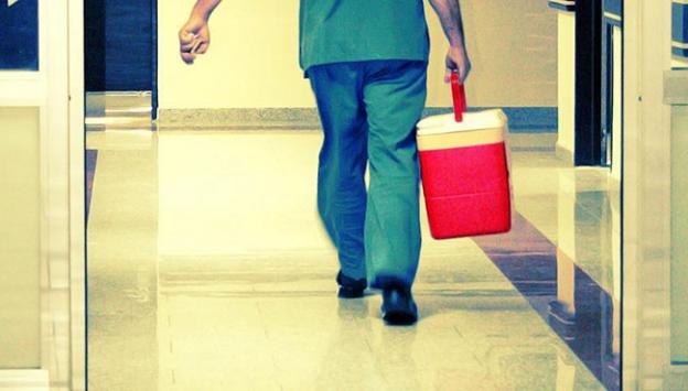 Organ bağışına yönelik kampanyalar meyvesini verdi