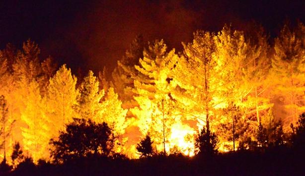 Orman yangınlarıyla mücadelede 27 bin kişiye eğitim