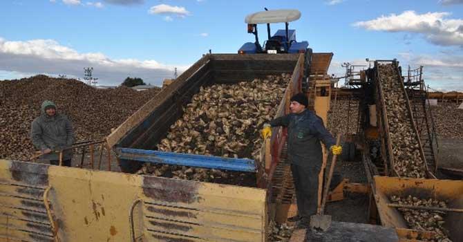 Genç çiftçi desteği başvuruları için yarın son gün