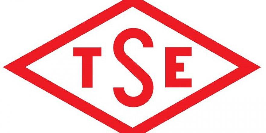 Türk Standardları Enstitüsünde (TSE) 13 bilişim personeli alacak