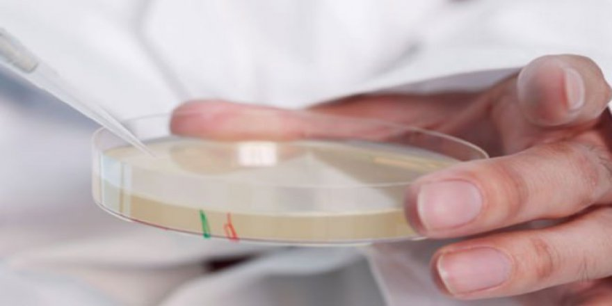 Türkiye'de her üç reçeteden birinde antibiyotik yazılıyor