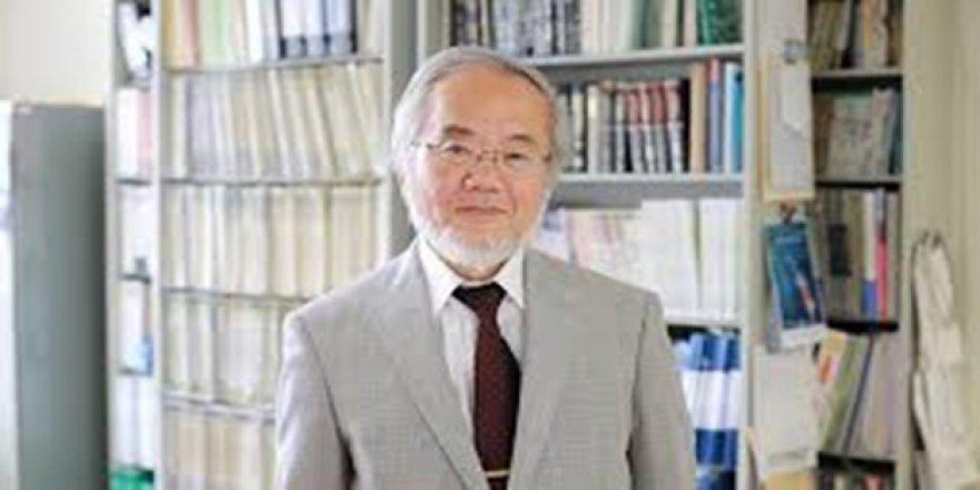 Nobel Tıp Ödülü Japon Yoşinori Ohsumi'ye