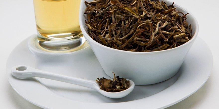 Beyaz çay kanser düşmanı