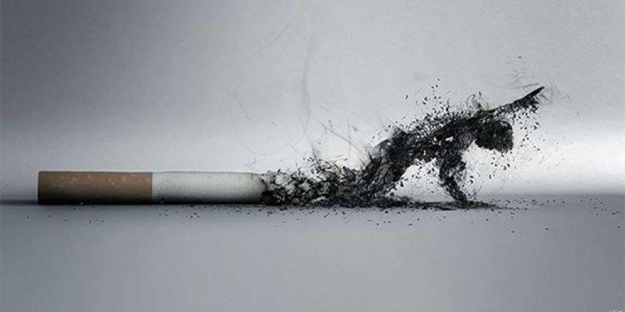 Sigara, akciğer kanseri riskini 30 kata kadar arttırıyor