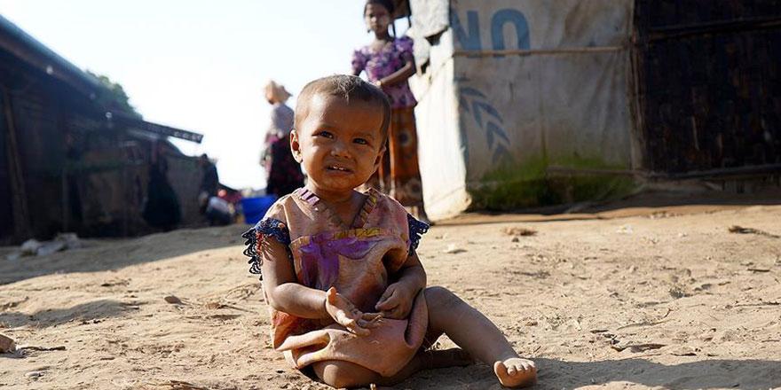 Myanmar'da fare istilası