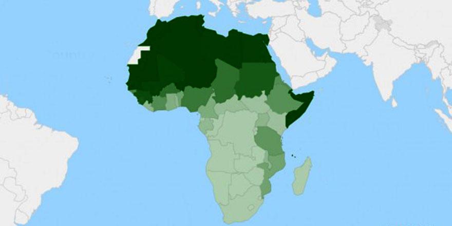 Afrika Boynuzu'nda BAE krizi