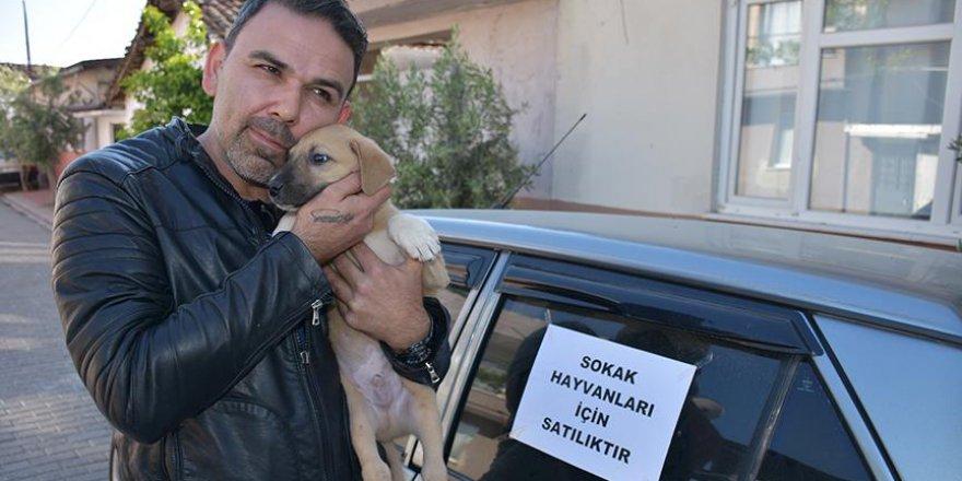 Sokak hayvanları için otomobilini satıyor